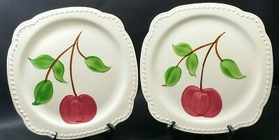 Pair of 1950's Apple Plates from Heritage Ware by Stetson