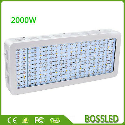 BOSSLED 1200W 1500W 1800W 2000W Full Spectrum LED Grow Light Panel Indoor Plants