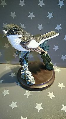 The Country Bird Collection The Pied Flycatcher