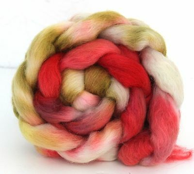 Shunklies Hand Dyed Massam Wool Combed Top 100g Mas2
