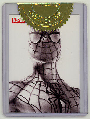 Spider-Man Archives Rittenhouse case topper chase card #CT2 (2009)