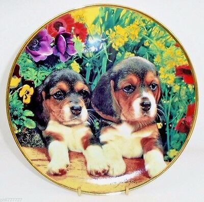 Beagle Puppies ~ Puppies & Posies Fine Porcelain Plate