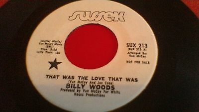 Billy Woods: That was the love that was/Let me make you happy: Sussex sux 213
