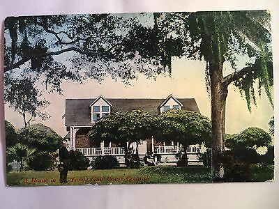 Vintage Texas Gulf Coast Country Home blank postcard unposted early 1900s