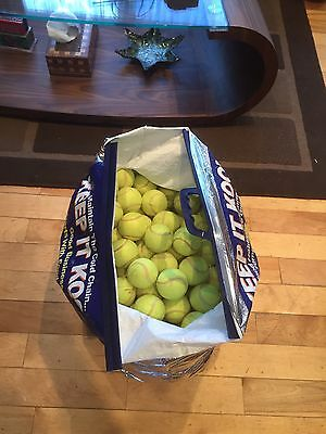 50 Tennis Balls For Dogs /Dog Ball / Toy.