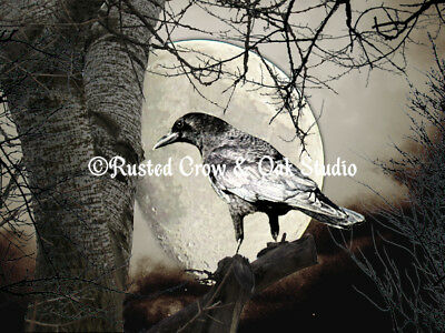 Rustic Gothic Black Bird Raven Crow Stone Green Writing Matted Picture USA A675