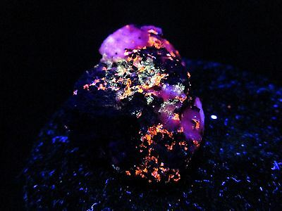Hard-to-Find **Rare Combo** Fluorescent Sterling Hill Franklin mineral rock 641