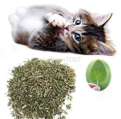 New Best Organic Dried Catnip Nepeta cataria Leaf & Flower Herb Choose Bulk CA
