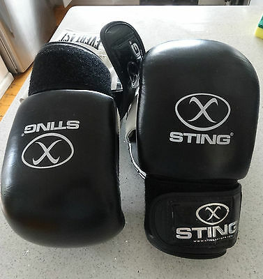 Sting Gel Boxing Mitts Size M And Everlast Focus Pads.