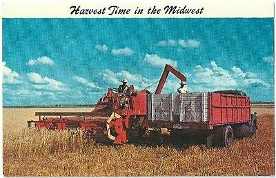 Harvest Time in the Midwest Vintage Postcard Chrome
