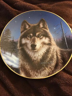 The Hamilton Collection Plate Winter Solitude Portraits Of The Wild