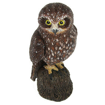 Science & Nature 75463 Boobook Owl Animals of Australia Toy Figurine - NIP