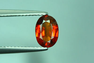 1.430Cts Amazing Top Luster Cut 100% Nr!! Fanta Orange Spessartite Garnet Aaa+++