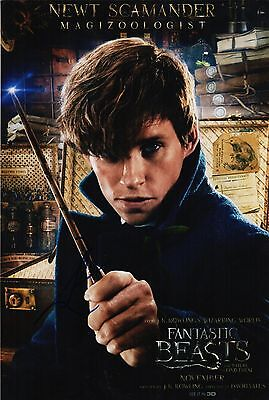Eddie Redmayne Signed 8 x 12 Fantastic Beasts and Where to Find Them Photo COA