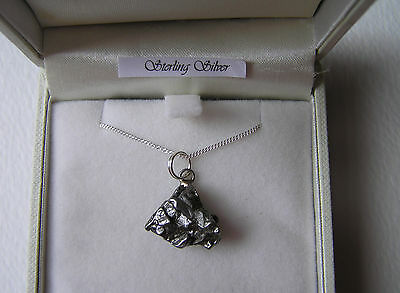 Stunning Campo Del Cielo Iron Meteorite Necklace On Solid Silver Chain - New!