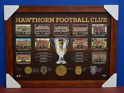 Hawthorn Premiership Afl Historical Series Print Framed Hodge Rioili Mitchell