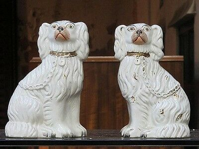 Victorian Staffordshire Dog Spaniels Matching Pair,porcelain England Antiques