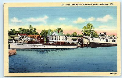 Boat Landing Docks Yacht Wicomico River Salisbury Maryland Vintage Postcard A86