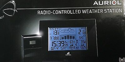 radio controlled weather station
