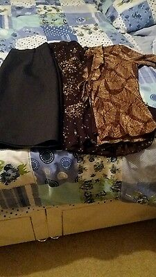 ladies clothes size 14 (2 skirts,1 top )