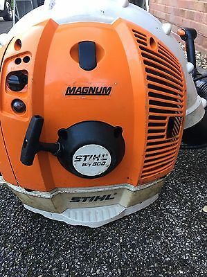 STHIL Br600 Blower