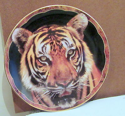 Royal Doulton Collectors Plate TIGER TIGER From GUARDIANS OF THE WILD