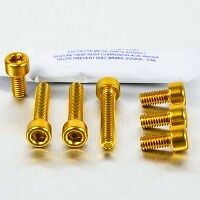AUDI TT  Mk 1  alloy anodized fuel flap bolts GOLD .  WOW .