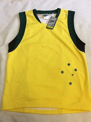 australian cricket team player issue match worn shirt large