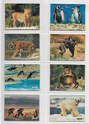 Cards - Shell Oil Animals 3D - 1971 - Complete Full Set