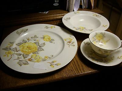 "Castleton China Mayfair plate,cup & sauser,8"" bowl"