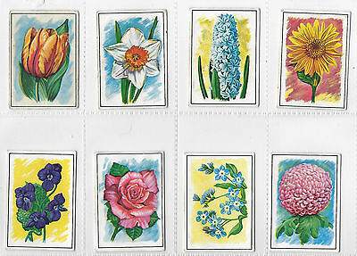 Cigarette Cards - Flowers- Ching & Co 1962 - Complete Full Set
