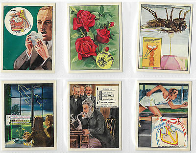 Cigarette Cards - How Whay & Why - J Bibby & Sons 1956 - Complete Full Set