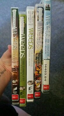 weeds dvds seasons 1  2 3 4 and 6