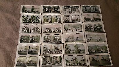 Vintage 1920's Light Color Stereoscope Cards/Pictures x 24 Zoo Pictures
