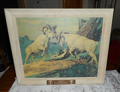 Vtg Seagram's 7 Wildlife Collection Framed Bar Art Dall Sheep Bob Kuhn