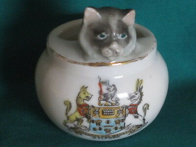German [China] Cat Peeping Out Of Bowl - SALFORD crest