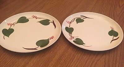 Two Blue Ridge Southern Pottery Stanhome Ivy Plate