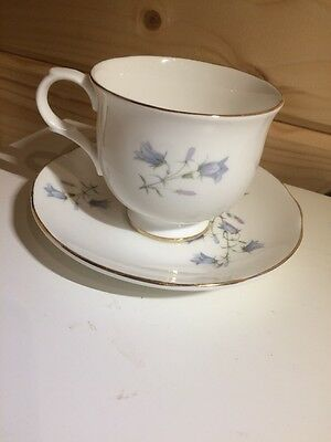 Sadler Fine Bone China Tea Cup And Saucer Decorated With Bluebell