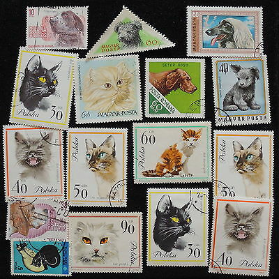YS-G191 CATS - Poland, Hungary, Romania, Great Stamps Used