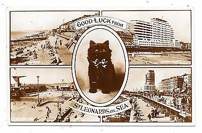Superb Real Photographic Multi-View Postcard St.leonards-On-Sea Sussex Black Cat