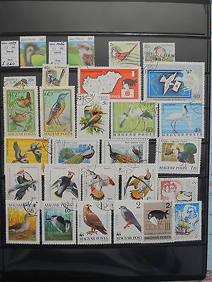 YS-L734 HUNGARY - Birds, Lot Of Great Stamps USED