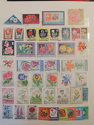 YS-M208 FLOWERS - Albania, Hungary, Bulgaria.. Lot Of Great Stamps USED