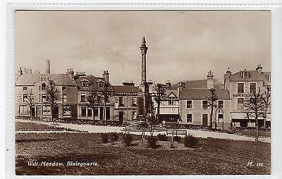 WELL MEADOW, BLAIRGOWRIE: Perthshire postcard (C24592)