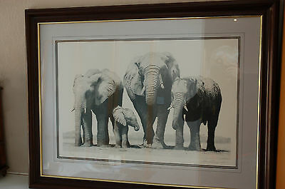 pencil signed limited edition print by Dancy woods