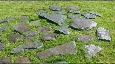 50 x Plum Stepping Stones / Paving Lakeland Slates Natural Shapes