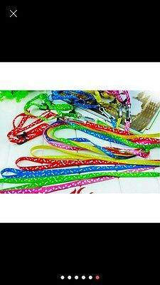 Joblot Wholesale Dog Lead And Harness X20