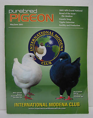 Modena Show Pigeon Magazine - out of print Issue Purebred Pigeon - full color