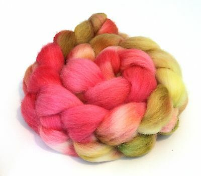 Hand Dyed Texel Wool 100g T09 Combed Wool Top Shunklies