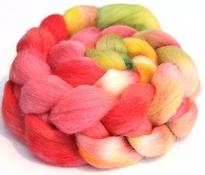 Hand Dyed Texel Wool 100g T08 Combed Wool Top Shunklies