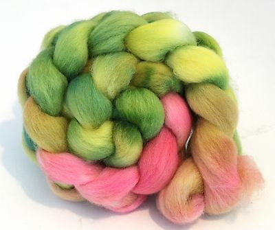 Hand Dyed Texel Wool 100g T07 Combed Wool Top Shunklies